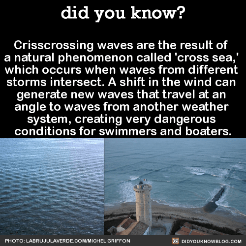 Crisscrossing waves are the result of a natural phenomenon called 'cross sea,' which occurs when waves from different storms intersect. A shift in the wind can generate new waves that travel at an angle to waves from another weather system, creating...