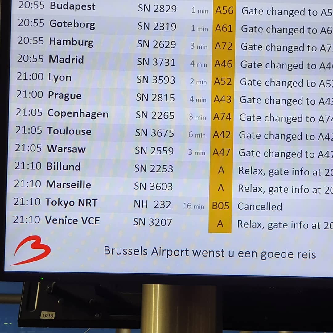 キタ━━━━(゚∀゚)━━━━!! (Brussels Airport)https://www.instagram.com/p/B2M0_K8g3Ok/?igshid=170069f7y058h