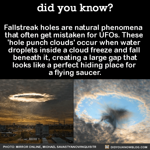 Fallstreak holes are natural phenomena that often get mistaken for UFOs. These 'hole punch clouds' occur when water droplets inside a cloud freeze and fall beneath it, creating a large gap that looks like a perfect hiding place for a flying...