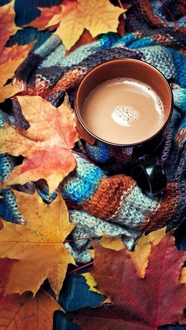 Hd wallpapers and background images. Hintergrundbilder Tumblr Herbst