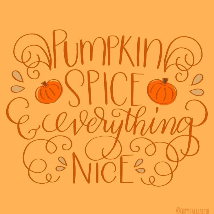 Image result for pumpkin everything