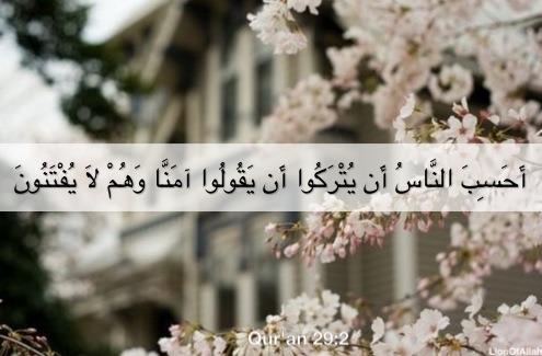 Islamic Art And Quotes Quran 292 أحسب الناس أن