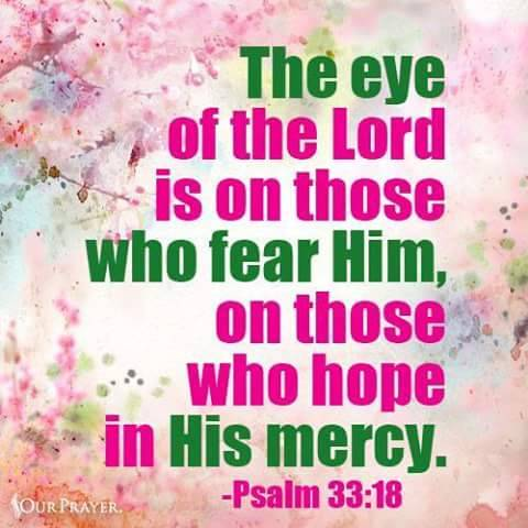 Image result for psalm 33:18 nkjv
