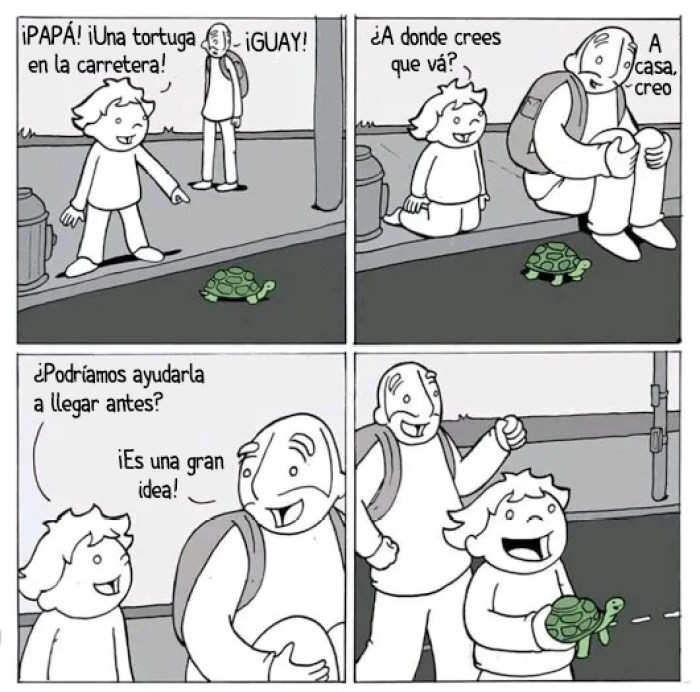 Chiste ayudar a la tortuga