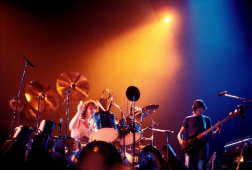 Pink Floyd Animals Tour 1977 Chicago | Myvacationplan org