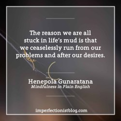 "#307 - A quote from our Imperfectionist Book, Mindfulness in Plain English:""The reason we are all stuck in life's mud is that we ceaselessly run from our problems and after our desires."" -Henepola Gunaratana http://bit.ly/2iolrbX"
