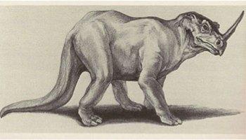 cryptid-wendigo:The Emela-ntouka is a rhinoceros-like