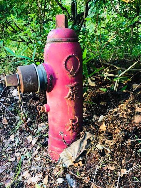 原村の消火栓