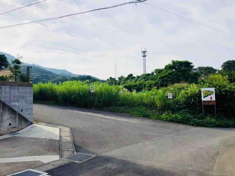 TINY CAMP VILLAGE入口