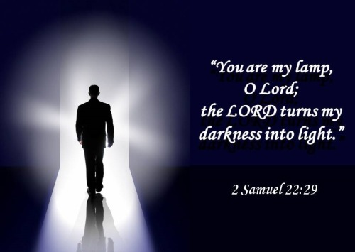 Image result for 2 samuel 22 29