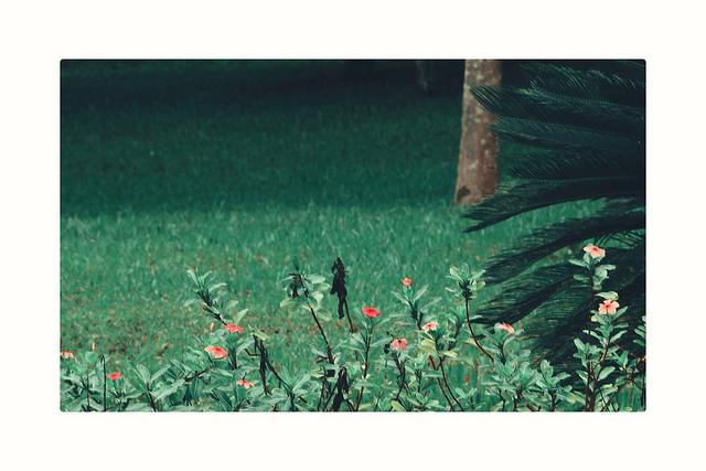 Grace on Flickr. Grace