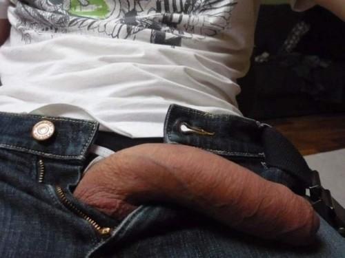 Foto da minha rola meia bomba