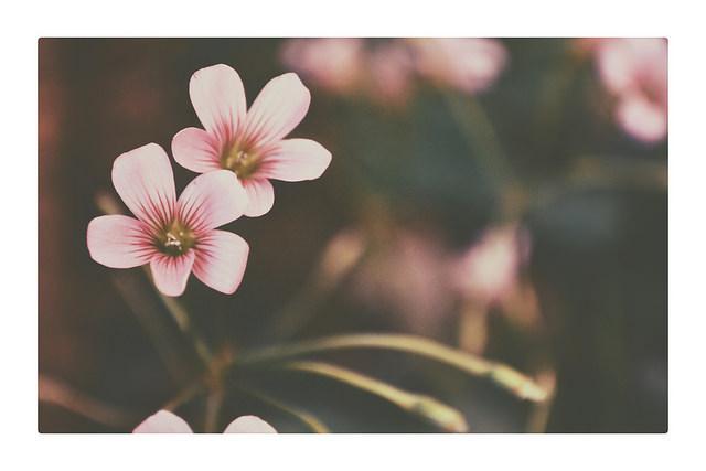 Goodness ^_^ on Flickr. Goodness ^_^