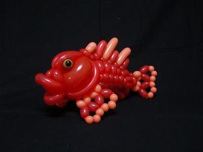 オニカサゴ scorpionfish 2015.12.6