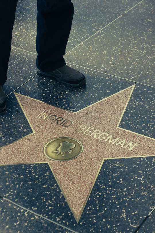 Los Angeles winter travel guide Hollywood walk of fame