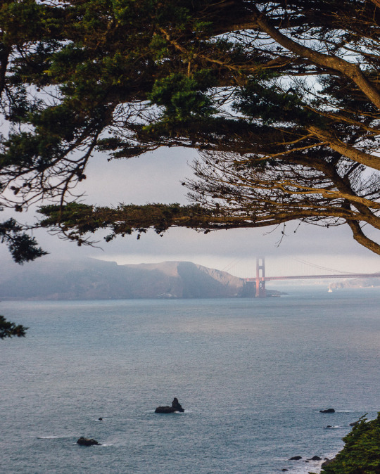 best San Francisco sunset