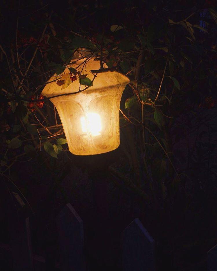Hasil gambar untuk cahaya tumblr