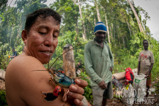 nowhere papua indonesia forest jungle wild wilderness tribal traditional culture travel adventure explore trek discover journey guide wonder dangerous survival village island tropical remote undiscovered crawfish claw crawdad lake fresh water food dinner cook men eating catching