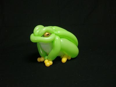 カエル frog 2014.6.1