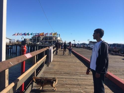 dog friendly Santa Barbara boardwalk
