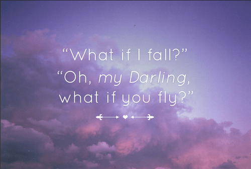 Image result for oh but darling what if you fly