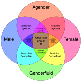 a research on the factors that influence gender identity Gender is defined by one's gender identity or the recognition that one is either male or female based on both biological and psychosocial considerations, and the internalization of this gender .