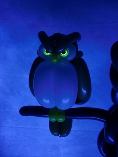 フクロウ(目の部分にネオンバルーンを使用) owl 2015.2.21