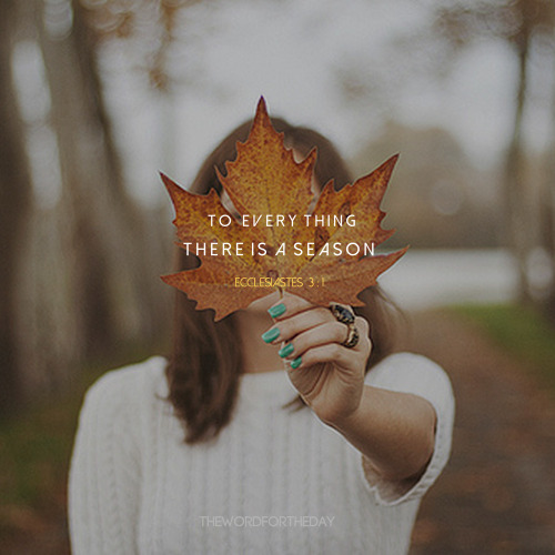 Ecclesiastes 3:1 To everything there is a season. I believe that God brings us to new seasons, where it is His desire to draw us close to Him- with no distractions, a time of sitting at His feet, where we grasp of the depth of His love, where we...