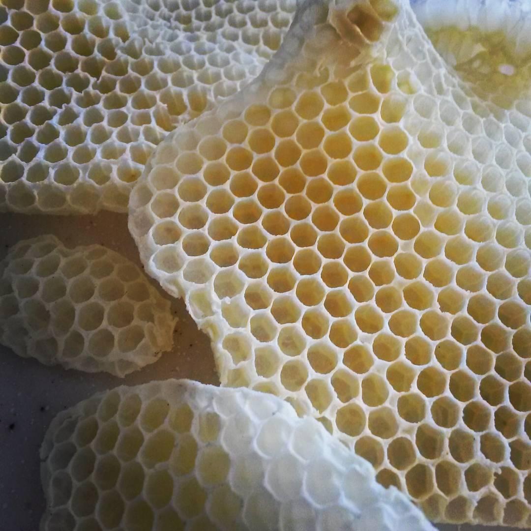 Günaydın!!! Bilin bakalım bunlar nedir? :) Geçen yıl eşim ve ben arıları merak etmiş, kendi balımızı üretmek istemiş ve arıcılığa başlamıştık. Geçenlerde babamız arılıktan sürprizle geldi!! Bizim arılar buldukları her boşluğa petek yapmışlar eşim de...