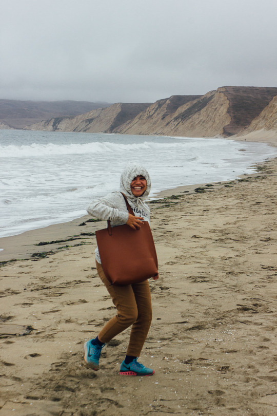point reyes guide california travel nationa seashore