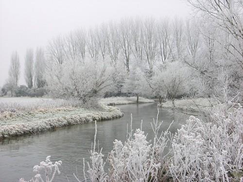 amandaricks.com/a-white-christmas/