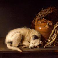 Gerrit Dou - Sleeping Dog (1650)