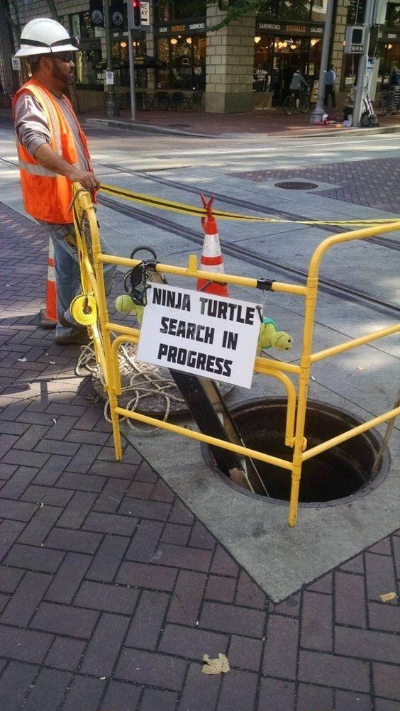 Tortugas Ninja desaparecida