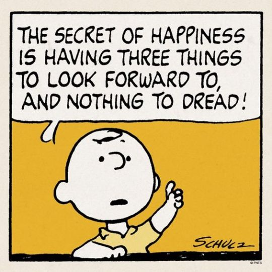 Peanuts Comic - Happiness