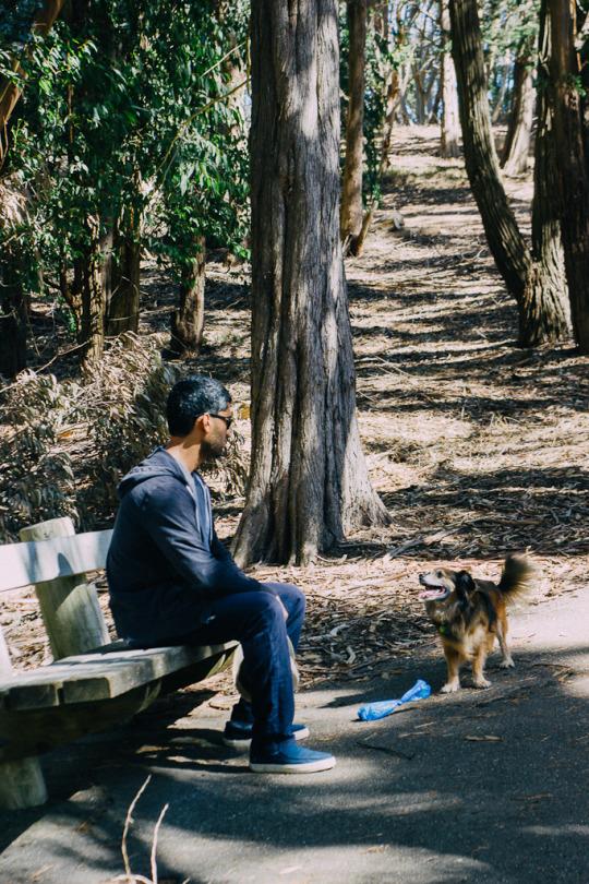 dog friendly San Francisco, dog friendly guide, dog friendly spots in San Francisco, where to take your dog in San Francisco, dog friendly parks in San Francisco, dog friendly SF parks, dog parks in SF, SF dog parks, San Francisco dog parks, John McLaren Park