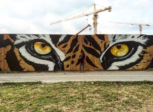 streetartglobal:  'Beast mode' by @escapeva in Malaysia. Just felt right for today. http://globalstreetart.com/escapeva#globalstreetart #escapeva #wallart #mural #streetarteverywhere #tiger #eyes #kualalumpur #malaysia https://www.instagram.com/p/BMmd2b8APuo/