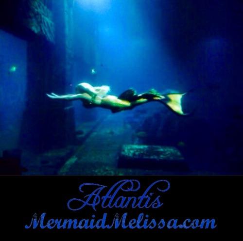 Atlantis Resort On Tumblr