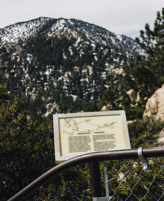 Palm Springs Tourism And Holidays Best Of Palm Springs: Spring Break Palm Springs, California: Top 5 Weekend