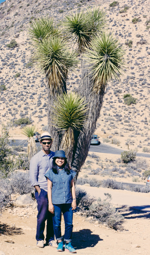 Day trip to Joshua tree, Joshua tree hikes, Joshua tree national park, sunrise at Joshua tree, day trip from palm springs, joshua tree restaurants, first timers guide to joshua tree, joshua tree hiking trails, where to stay in Joshua tree
