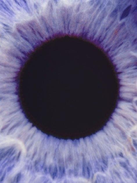 Violet Eyes On Tumblr