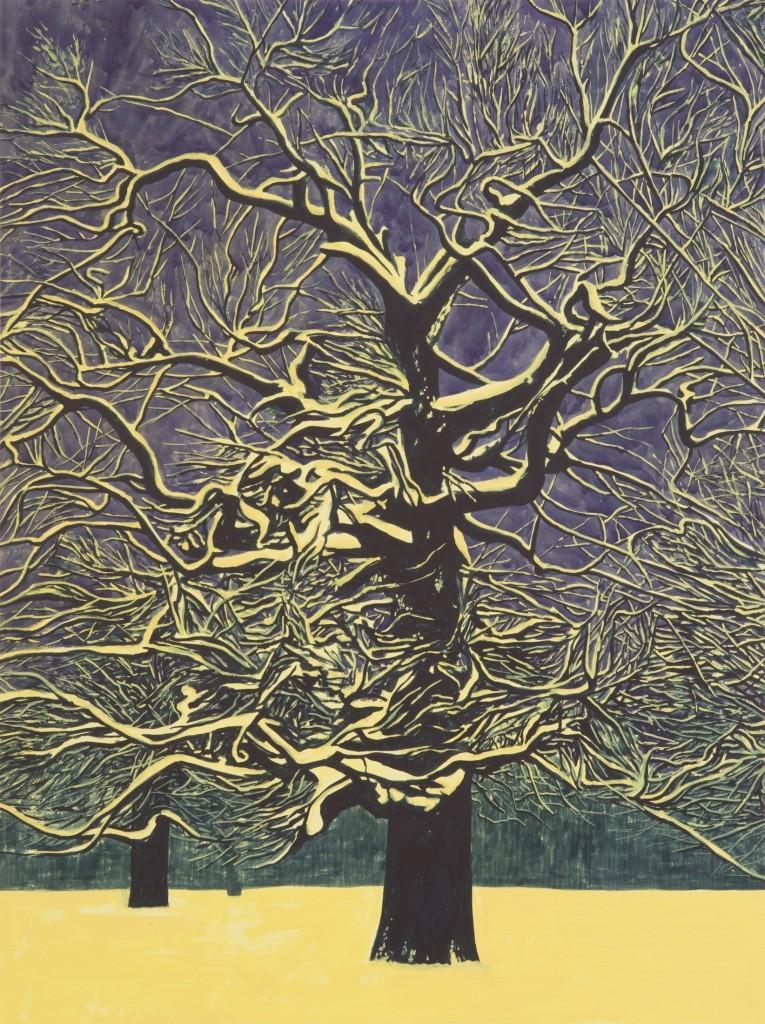 "thunderstruck9:""Martin Jacobson (Swedish, b. 1978), Illuminated winter oak, 2013. Watercolour on paper, 72 x 96 cm."""
