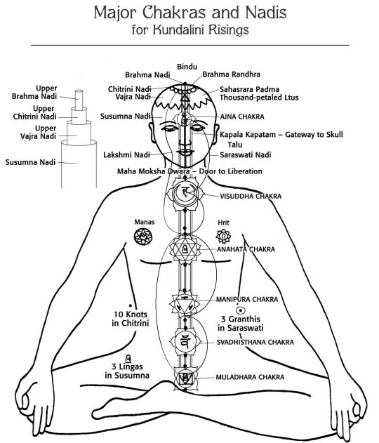 The Nadi System (Channel Of Our Life Force)