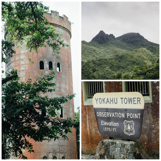 Observation point, Yokahu tower El yunque rainforest
