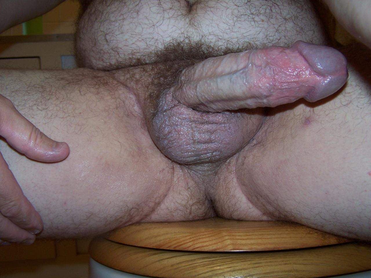 image Hairy gay truckers sucking and eating cum