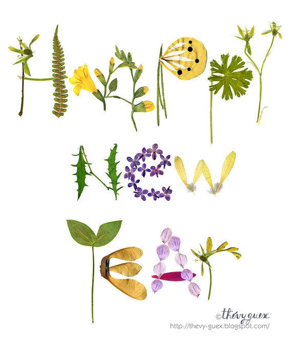 nature happy new year