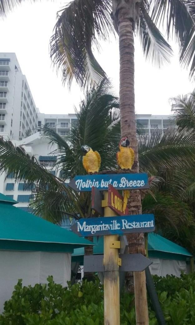 tumblr_inline_oblrgsGWgP1upgrjk_540 Beach--Broadwalk--B-Merry!