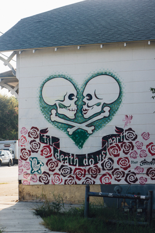 Street art murals austin texas