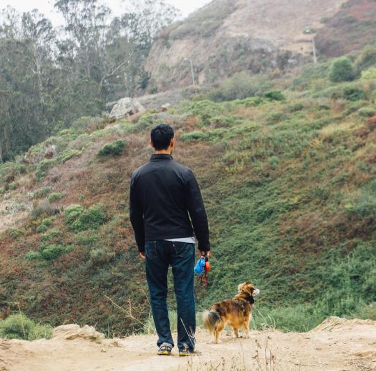 dog friendly San Francisco, dog friendly guide, dog friendly spots in San Francisco, where to take your dog in San Francisco, dog friendly parks in San Francisco, dog friendly SF parks, dog parks in SF, SF dog parks, San Francisco dog parks