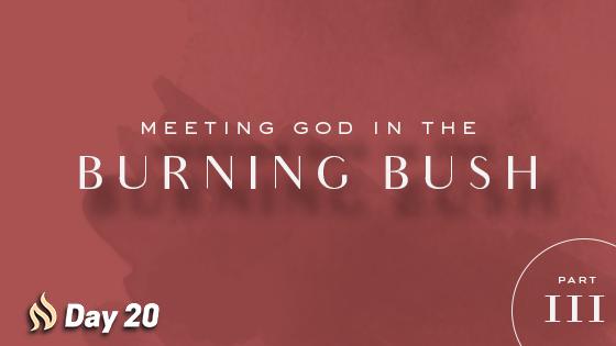 burning bush church fathers # 46