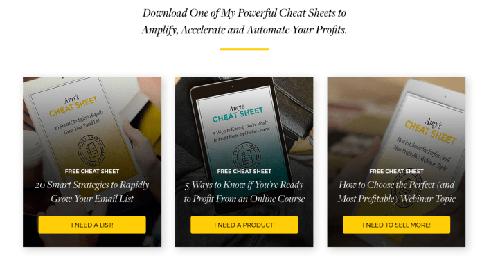 example of 3 different lead magnets on a landing page